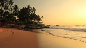 Playa de Sandy con las palmeras en la puesta del sol metrajes