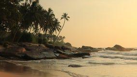 Playa de Sandy con las palmeras en la puesta del sol almacen de metraje de vídeo