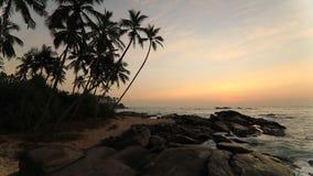 Playa de Sandy con las palmeras en la puesta del sol almacen de video