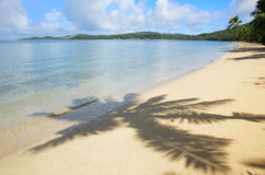 Playa de Sandy con las sombras de la palmera, isla del Nananu-yo-Ra, Fiji imagenes de archivo