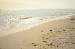 Playa de Sandy en la puesta del sol Fotos de archivo libres de regalías