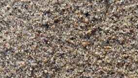 Playa de Sandy en un aumento foto de archivo libre de regalías
