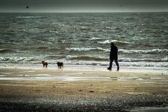 Playa de Seamill en un día tempestuoso Foto de archivo libre de regalías