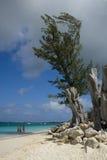 Playa de siete millas fotos de archivo