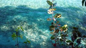 Playa de Sosua Fotografía de archivo libre de regalías
