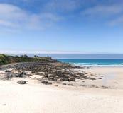Playa de st Ives Cornwall England Imágenes de archivo libres de regalías