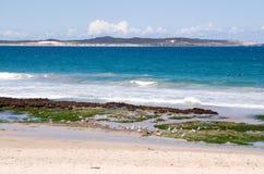 Playa de Sydney Foto de archivo libre de regalías