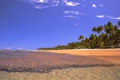 Playa de Taipu de Fora, Bahía (el Brasil) Imagen de archivo libre de regalías