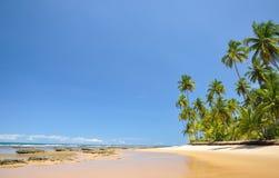 Playa de Taipu de Fora, Bahía (el Brasil) Fotos de archivo libres de regalías