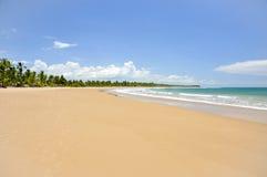 Playa de Taipu de Fora, Bahía (el Brasil) Fotografía de archivo