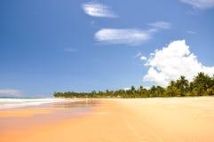 Playa de Taipu de Fora, Bahía (el Brasil) Imagenes de archivo