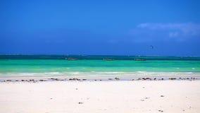 Playa de Tanzania metrajes
