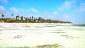 Playa de Tanzania almacen de video