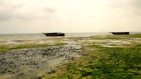 Playa de Tanzania de los barcos almacen de video