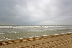 Playa de Texel foto de archivo