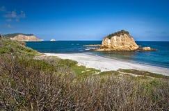 Playa de Tortuguita, parque nacional de Machalilla imágenes de archivo libres de regalías