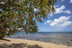 Playa de Trinidad y Tobago Imagenes de archivo