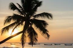 Playa de Tulum en la salida del sol Imagen de archivo libre de regalías