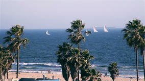 Playa de Venecia metrajes