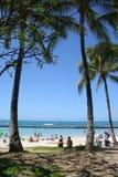 Playa de Waikiki de las palmas de Troical Imágenes de archivo libres de regalías