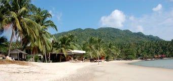Playa de Whitesand con las palmas Imagen de archivo libre de regalías