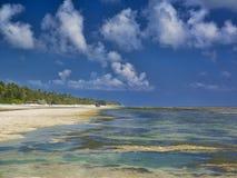 Playa de Zanzíbar foto de archivo