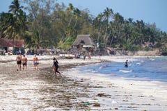 Playa de Zanzíbar Fotos de archivo