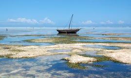 Playa de Zanzibar_matemwe fotografía de archivo libre de regalías