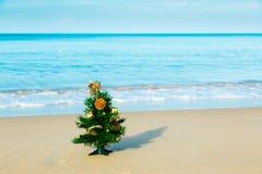 Playa del Año Nuevo, mar, abeto Fotografía de archivo libre de regalías
