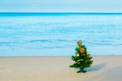 Playa del Año Nuevo, mar, abeto Imágenes de archivo libres de regalías
