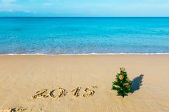 Playa del Año Nuevo, mar, abeto Foto de archivo