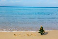 Playa del Año Nuevo, mar, abeto Fotografía de archivo