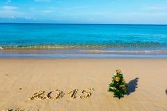 Playa del Año Nuevo, mar, abeto Fotos de archivo libres de regalías