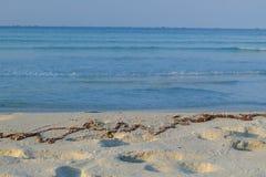 Playa del azul del mar del azul de cielo azul Fotos de archivo