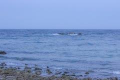 Playa del blanca Ibiza del Agua de Aiguas Blanques con agua de la turquesa encendido Imagen de archivo