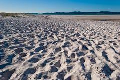 Playa del blanco de la isla de Whitsundays Fotos de archivo