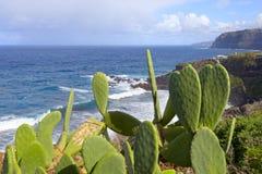 Playa del Bolulo Stock Fotografie