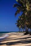Playa del Brasil Maceio Gunga Imagen de archivo libre de regalías