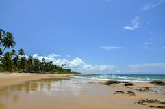 Playa del Brasil (Taipu de Fora) Imagen de archivo libre de regalías