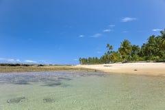 Playa del Brasil Tropicsl Foto de archivo libre de regalías