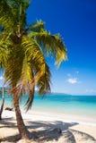 Playa del Caribe Foto de archivo libre de regalías