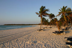 Playa del Caribe con las palmas y las sillas Fotos de archivo libres de regalías