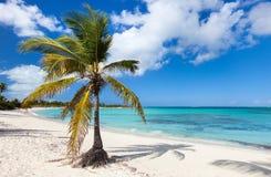 Playa del Caribe hermosa Fotografía de archivo