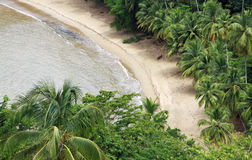 Playa del Caribe - Trinidad y Tobago 06 Imágenes de archivo libres de regalías