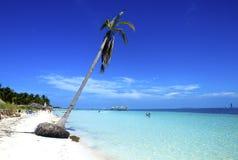 playa del Caribe tropical Imagen de archivo