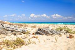 Playa Del Carmen beach, Mexico Royalty Free Stock Image