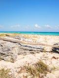 Playa Del Carmen beach, Mexico Royalty Free Stock Photo