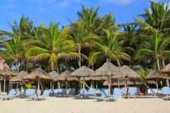 Playa del Carmen beach resort. Parasols and deckchairs in front of a beach resort in Playa del Carmen, Yucatan, Mexico Royalty Free Stock Photos