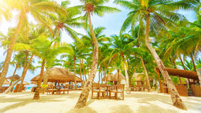 Playa del Carmen beach resort royalty free stock photo