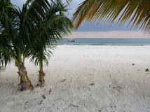 Playa del Carmenkustlinje i Riviera Maya Caribbean p? Mayan Mexico royaltyfria bilder